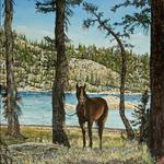 Tranquility  24x36 2011  is of my niece Sarah's horse Peppy at Long Lake in the Sierras